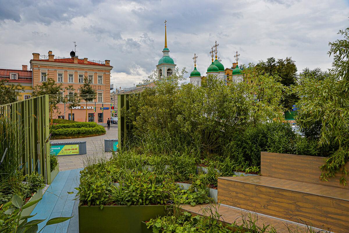 Номинация «Малый выставочный сад»