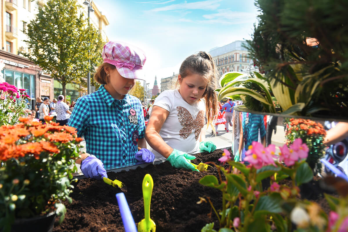 September 8: Amateur Gardening Competition