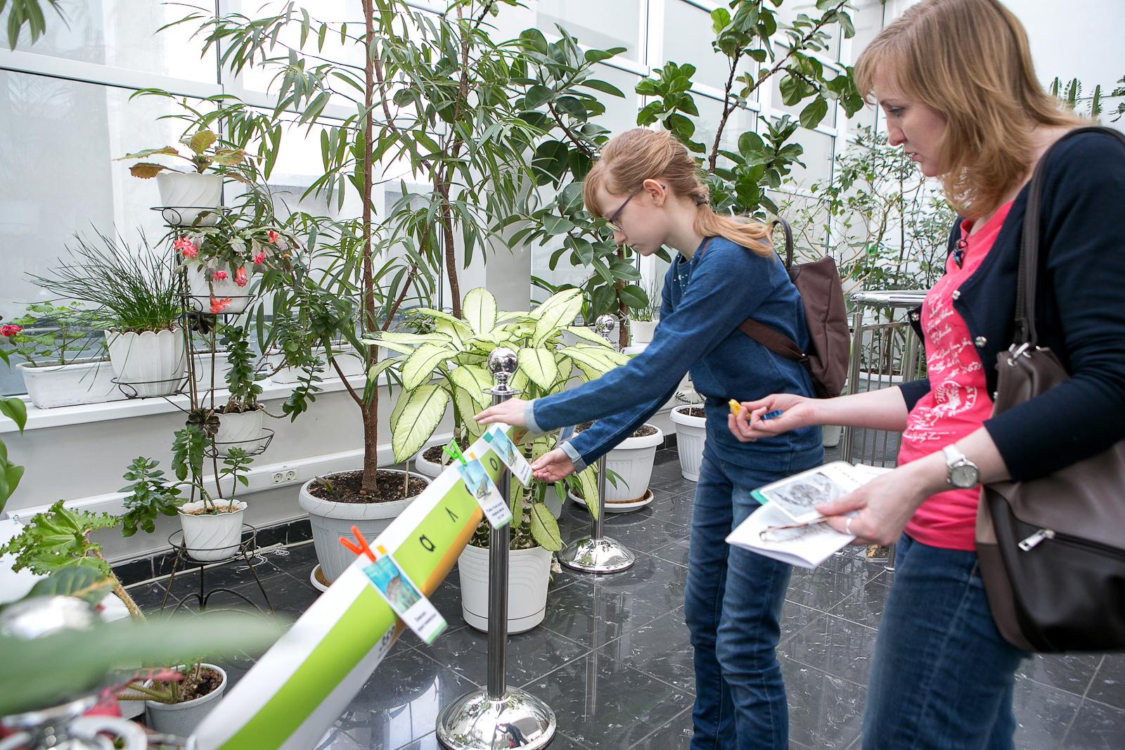 Развлекательная программа «День эволюции» – события на сайте «Московские Сезоны»