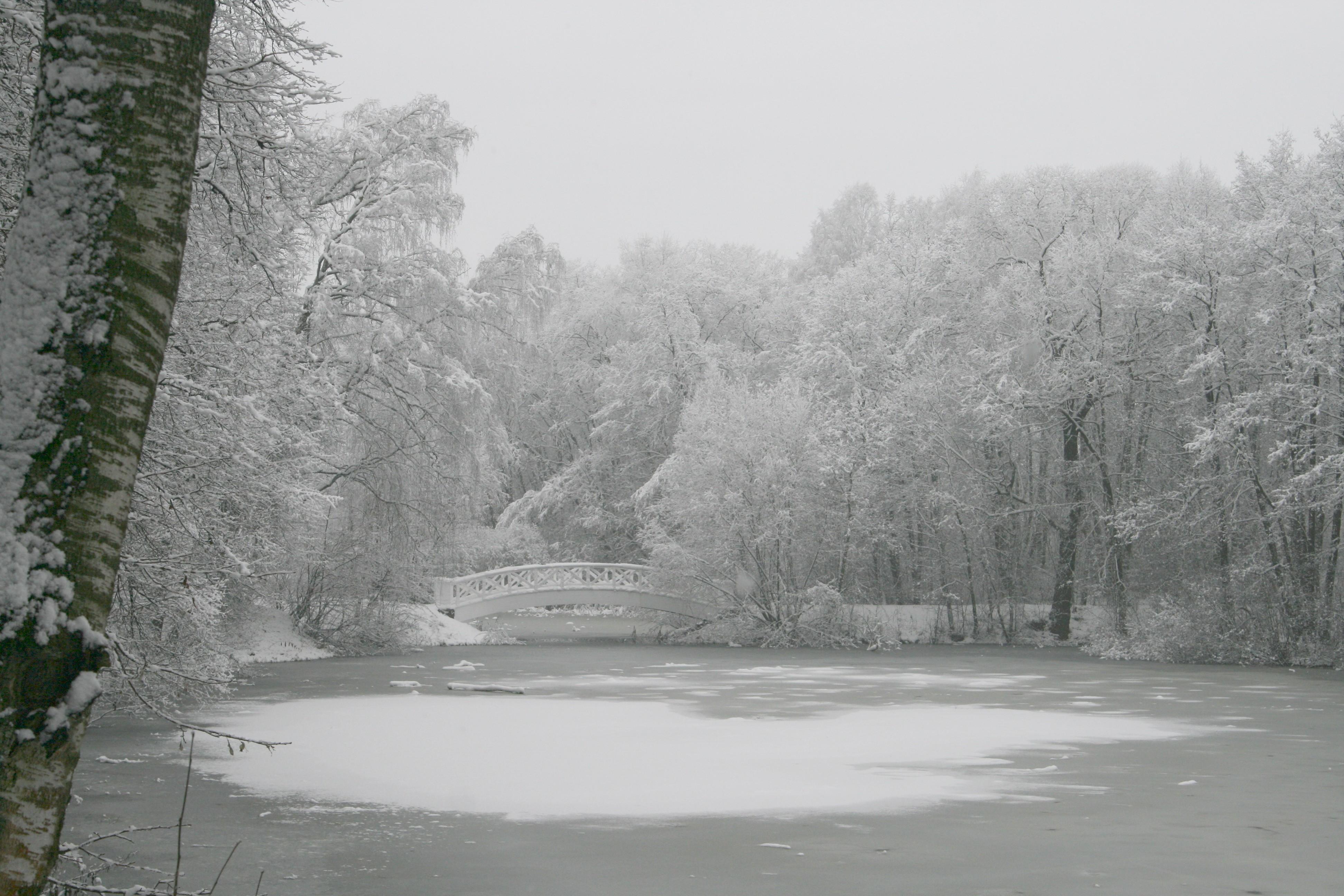 Тематическая экскурсия «Усадебный парк в Остафьеве» – события на сайте «Московские Сезоны»