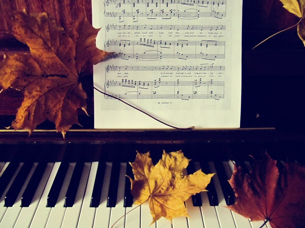 Концерт «Любимые фортепианные концерты» – события на сайте «Московские Сезоны»