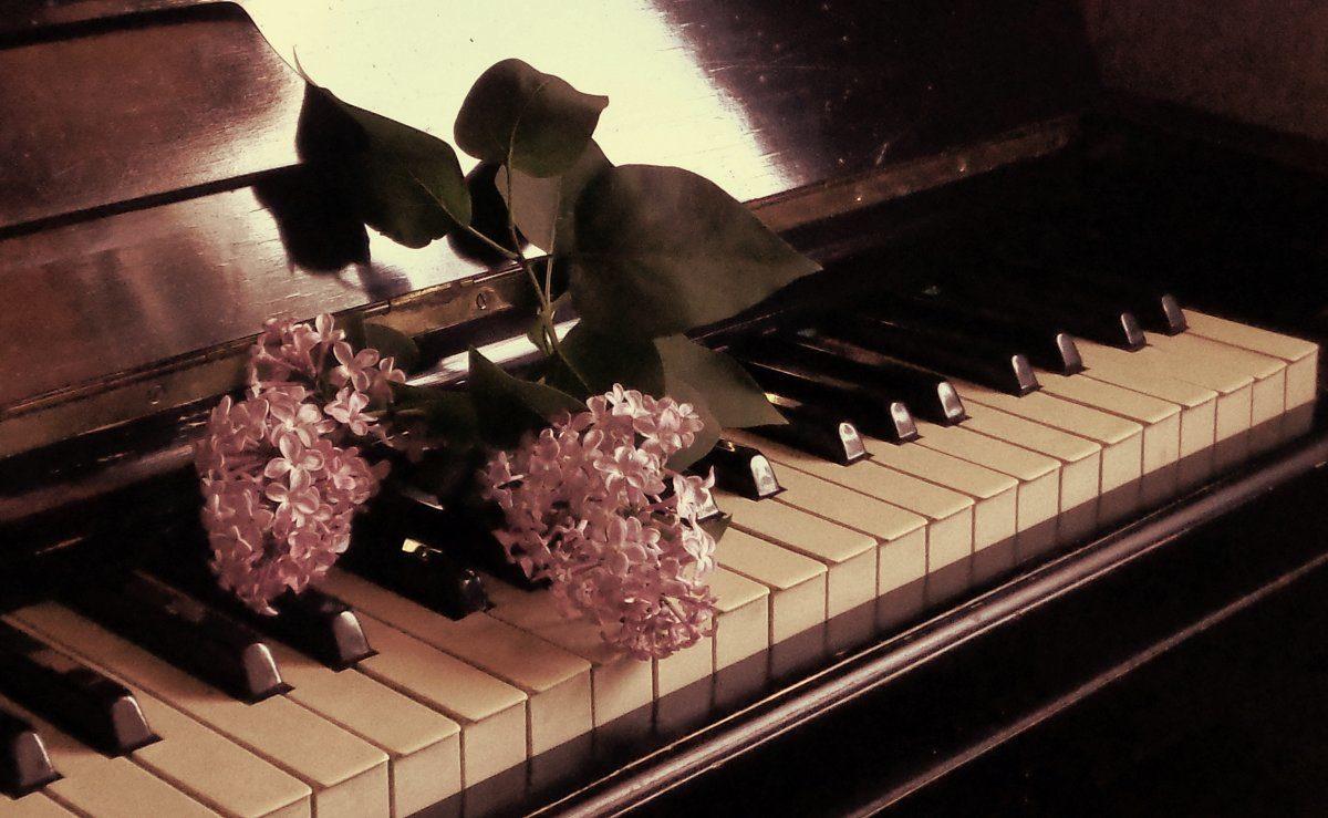 Концерт «Любимый фортепианные концерты: Чайковский-Брамс» – события на сайте «Московские Сезоны»