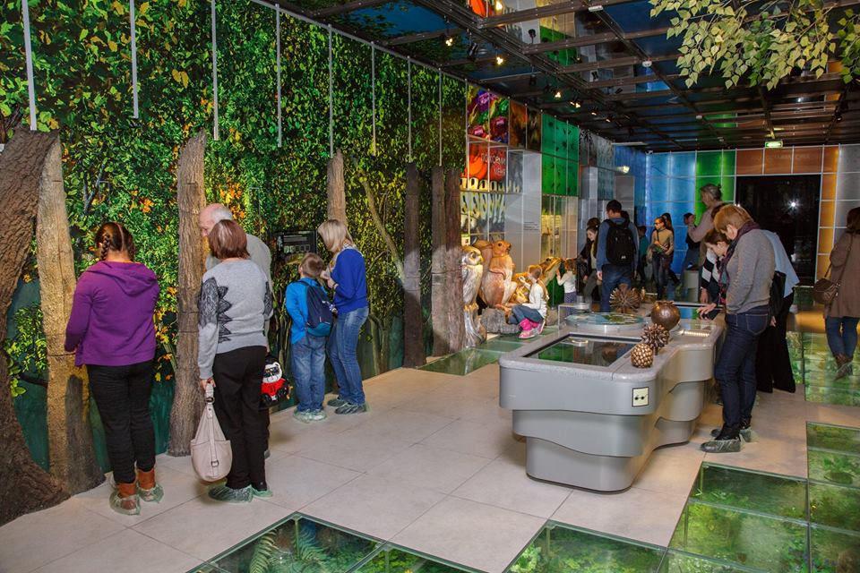 Конференция «Интерпретация природного наследия музейными средствами: перспективы, проблемы, решения» – события на сайте «Московские Сезоны»