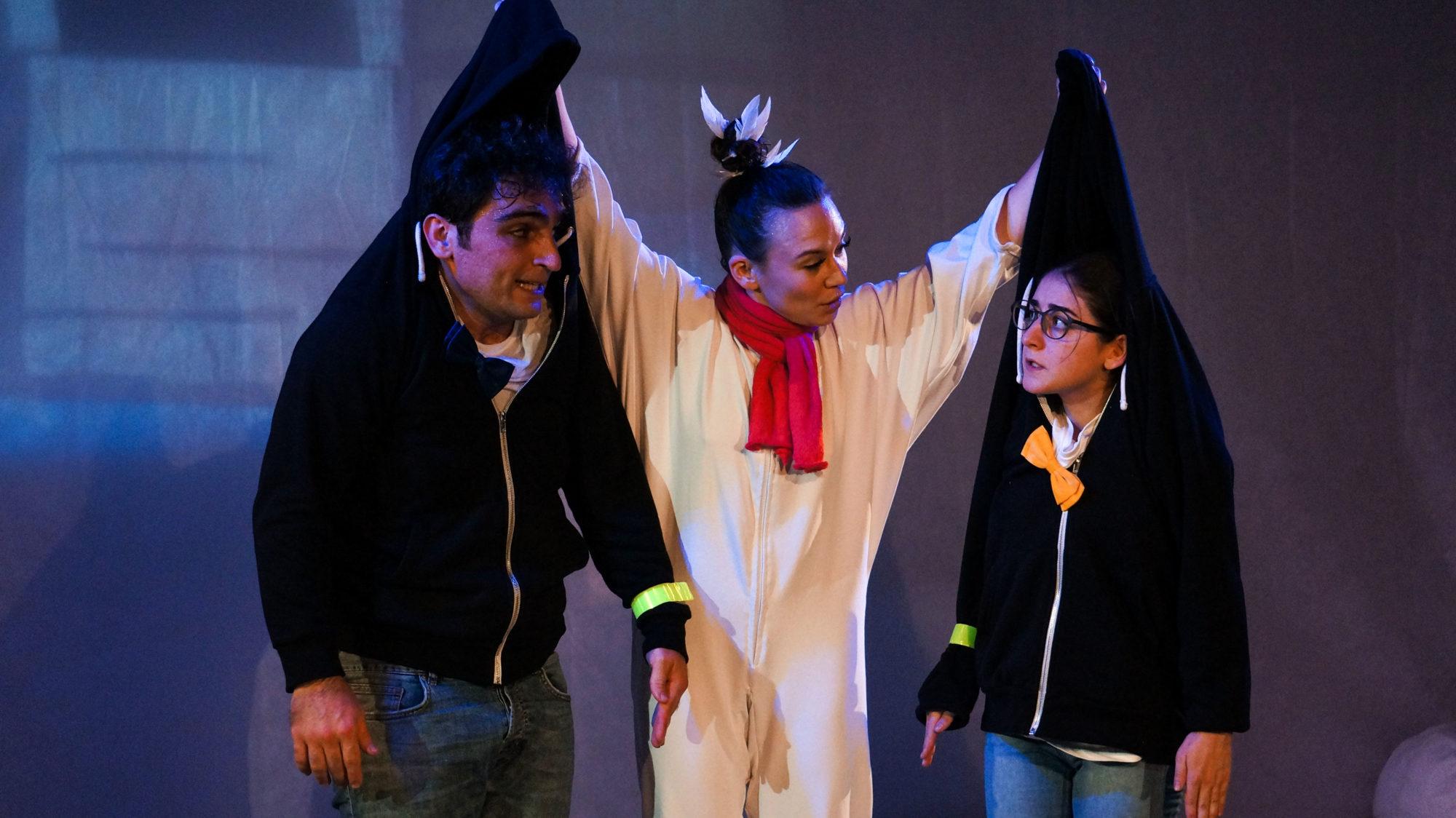 Спектакль «Всё о пингвинах» – события на сайте «Московские Сезоны»