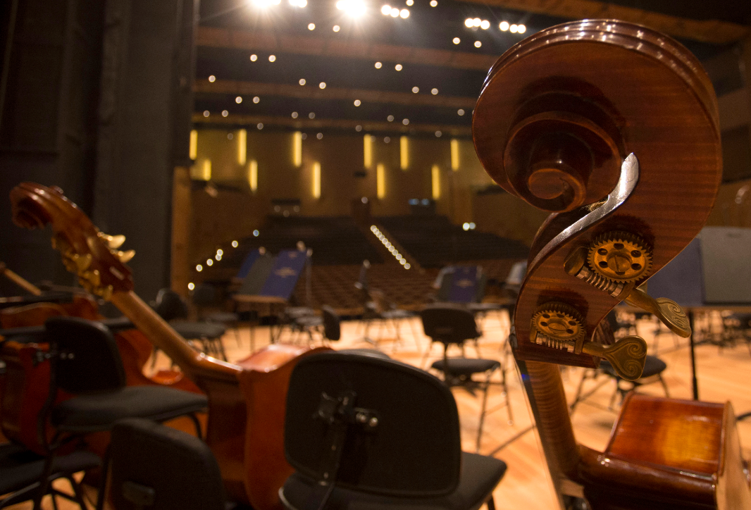 Концерт «Дирижирует Павел Коган» – события на сайте «Московские Сезоны»