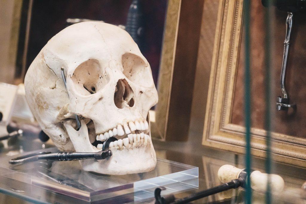 «Ночь музеев» в Музее истории медицины МГМСУ им. А. И. Евдокимова – события на сайте «Московские Сезоны»