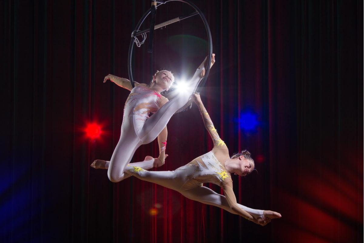 Фестиваль циркового искусства «Идол» в Большом московском цирке – события на сайте «Московские Сезоны»