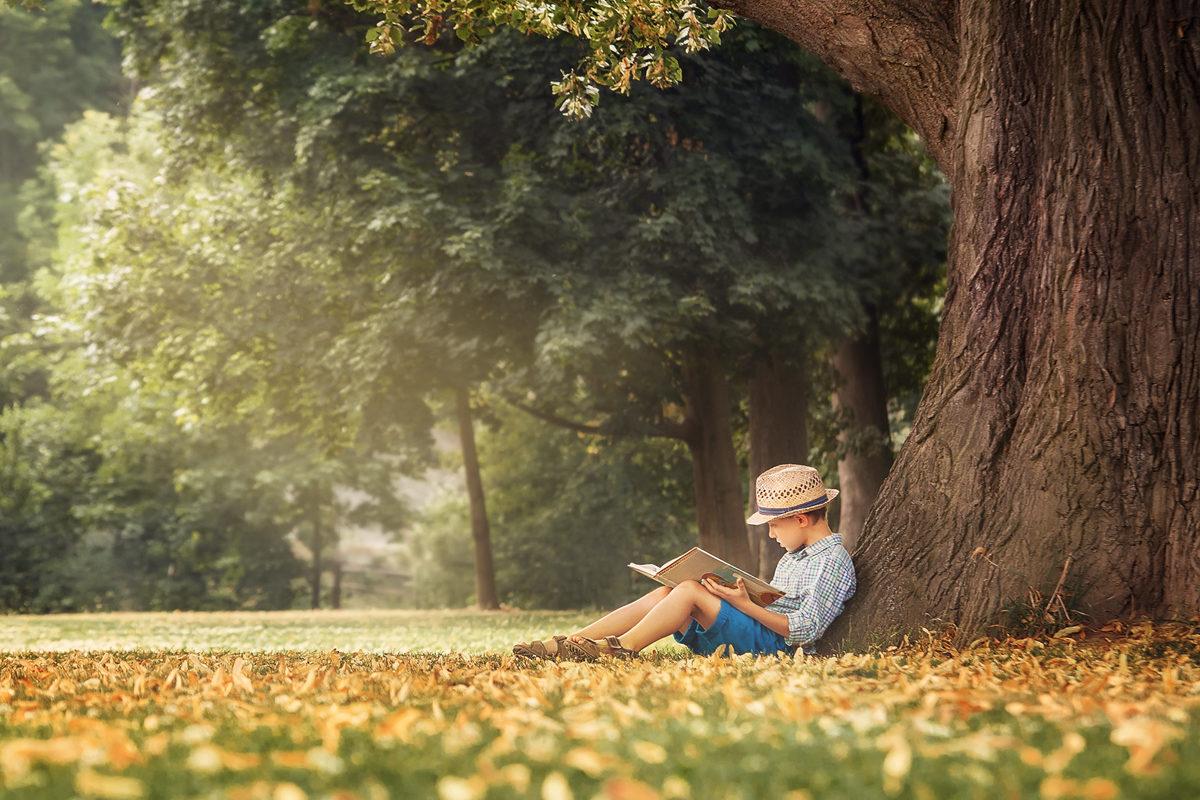 Литературная викторина «Волшебный мир чудес» в библиотеке № 118 – события на сайте «Московские Сезоны»