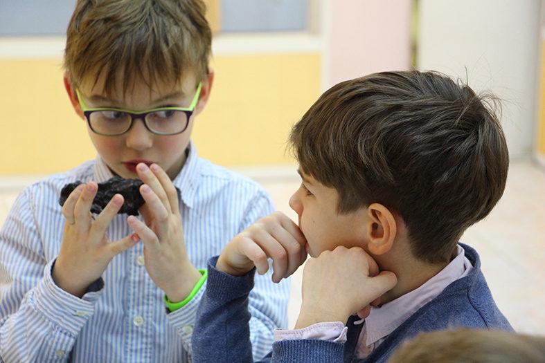 Программа «В поисках предков нашей ёлки» – события на сайте «Московские Сезоны»
