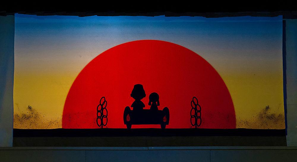 Спектакль «Айболит» в Московском детском театре теней – события на сайте «Московские Сезоны»