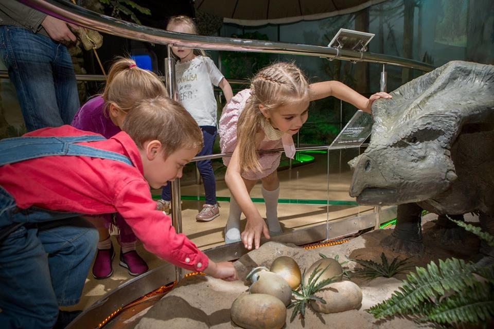 Праздник «Дошкольной академии» в Государственном Дарвиновском музее – события на сайте «Московские Сезоны»