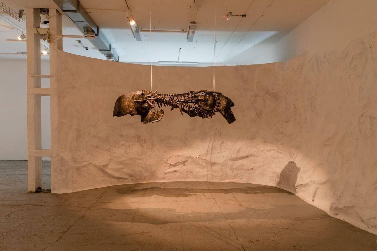 Выставка «Музей искусственной истории» в Дарвиновском музее  – события на сайте «Московские Сезоны»