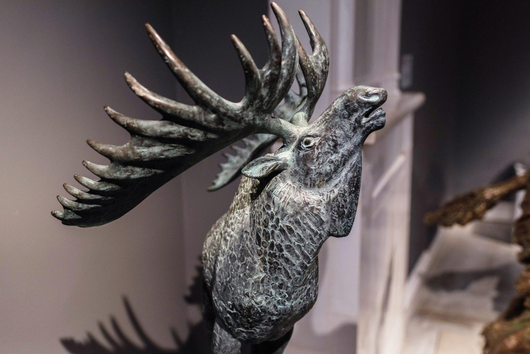 Экскурсия по выставке «Анималия. Трогательная выставка» в галерее «РОСИЗО» – события на сайте «Московские Сезоны»